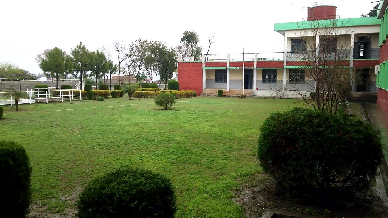 雨滴打濕了校園